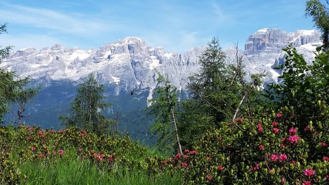 Dolomiti di Brenta from le Corniselle